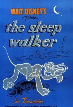 The Sleep Walker