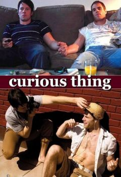 Curious Thing