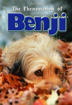 The Phenomenon of Benji