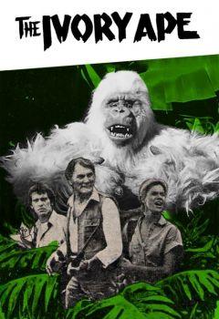 The Ivory Ape