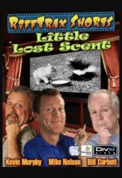 Little Lost Scent