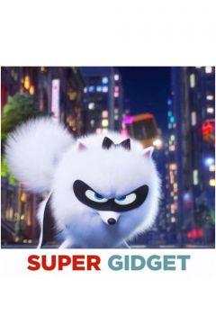 Super Gidget
