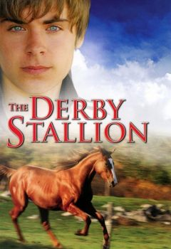 The Derby Stallion