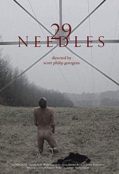 29 Needles