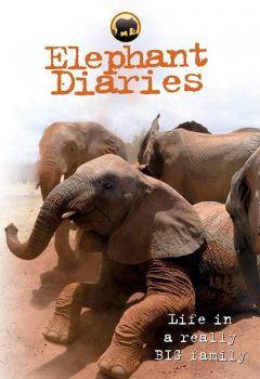 Elephant Diaries