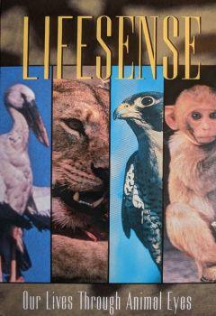 Lifesense: Our Lives Through Animal Eyes